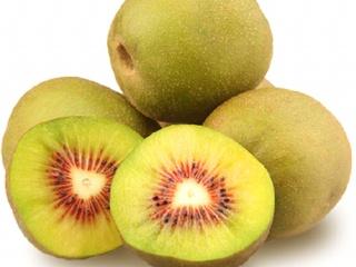 红心猕猴桃树苗 嫁接猕猴桃苗 红阳猕猴桃树苗品种质量优