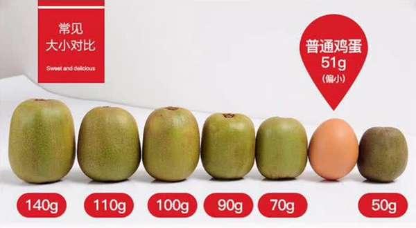 猕猴桃大小对比图